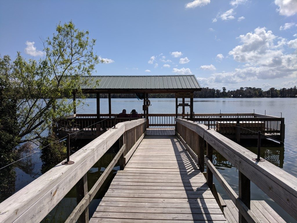 50 Hikes: #4 Trout Lake Nature Center