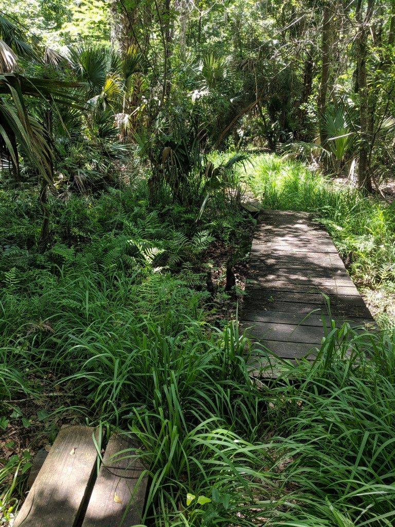 50 Hikes: #17 De Leon Springs State Park
