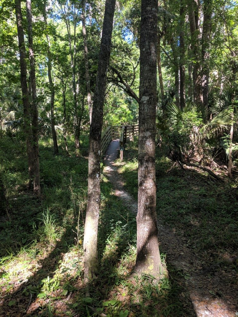 50 Hikes: #19 Black Bear Wilderness Area