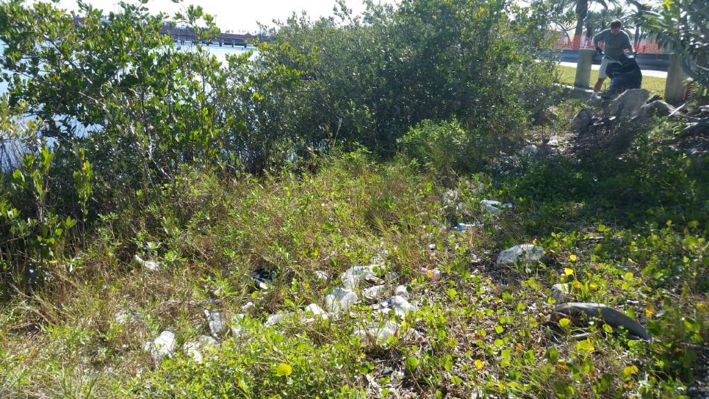 Riverfront Park Cleanup