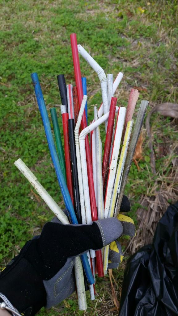Riverfront Park Cleanup (Straws)